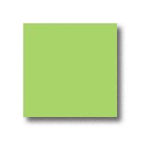 Бумага цветная А4 500 листов 80 г/м2 Mondi IQ, лайм интенсив №46 -Бумагия-