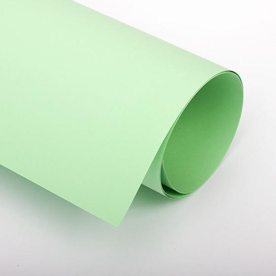 Бумага цветная 70х100 см 120 г/м2 Spectra color 190 зеленый пастель -Бумагия-