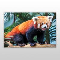 Игра пазл, серия «Лесные хищники», 120 эл., арт. PY-0207 -Бумагия-