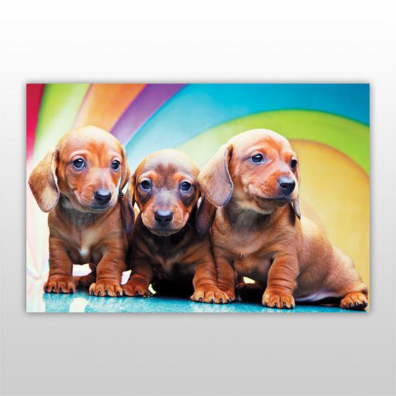 Пазл для детей, серия «Собаки и щенки», арт. PZ-1401 -Бумагия-
