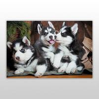 Пазл для детей, серия «Собаки и щенки», арт. PZ-1408 -Бумагия-